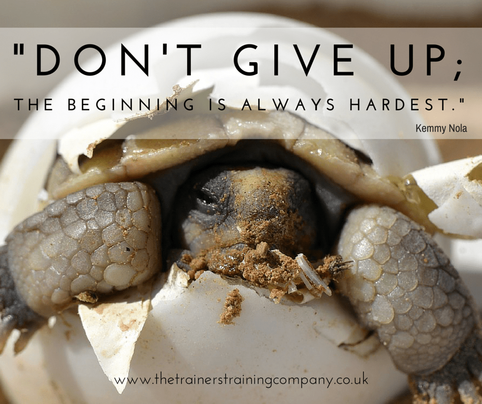 Don't give up; the beginning is always hardest.
