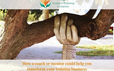 How a coach or mentor could help you transform your training business